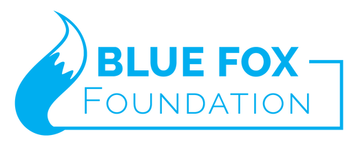 Blue Fox Agile Accounting Foundation, professional development for nonprofits